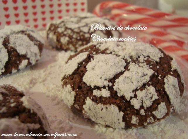 biscoitinhos de natal 076