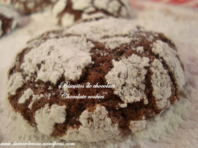 biscoitinhos de natal 081