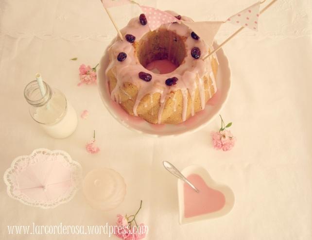 bolo integral de cranberry e maçã