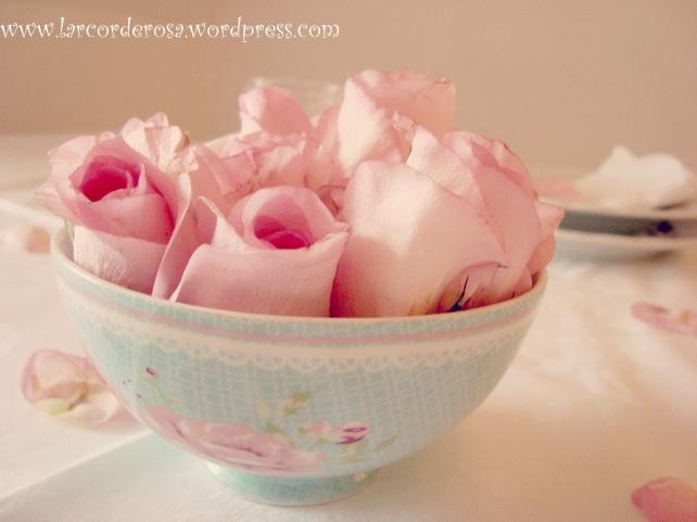 rosas na tijela